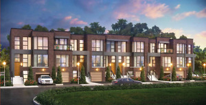 Brand New Luxury 4BR Townhome in Thornhill Woods