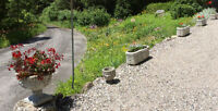 Outdoor Decorative Statues and Flower Pots - Concrete & alike