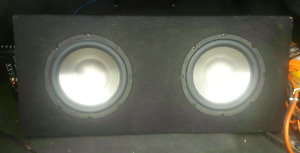 "Two 10"" Subs and Amp"