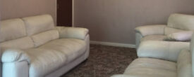 Offer only valid before Saturday-Almost new Sofa a give away at this price