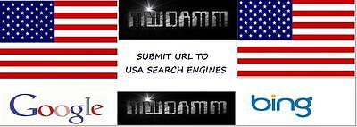 Submit Url To 50 Usa Search Engines Manual Submit To Bing   Google  2 50 Obo