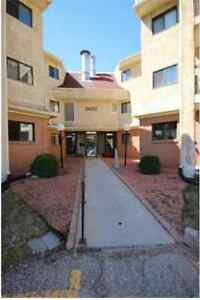 2 Bedroom Fully Furnished Condo For Rent- Available February 1!