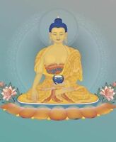 Meditation and Modern Buddhism: The Fearless Heart of Compassion