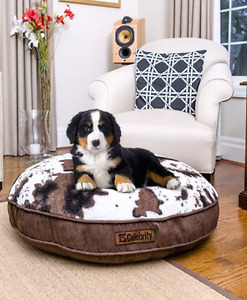 All dog beds $15