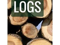 Free logs wanted. Small trees cut down, fallen trees or large branches sawn up and wood removed.