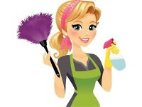 Experienced Cleaner Available