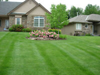Weekly lawn Mowing,lawn care. Calgary wide