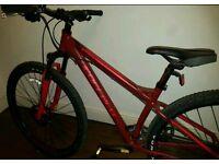 Carrera Sulcata Mountain Bike - LTD Edition
