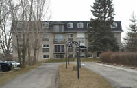 Avail Jan 15: 1-bdrm Apt $840/mth @ KW border (Hydro incl)