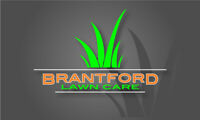 Professional and reliable lawn cutting services.
