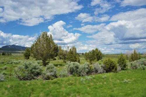 10 ACRE UTAH RANCH LAND TREED LOT W/COUNTY ROAD~NEAR SAWTOOTH NAT.FOREST & IDAHO