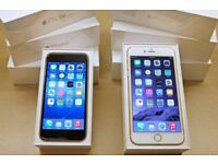 IPHONE 6 16GB UNLOCKED BRAND NEW CONDITION BOX ACCESSORISE WARRANTY &