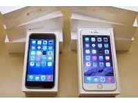 Apple iPhone 6 128GB UNLOCKED BRAND NEW CONDITION WARRANTY