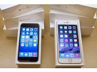 Apple iPhone 6 128GB UNLOCKED BRAND NEW WARRANTY &