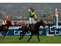 Cheltenham Gold Cup Day Ticket
