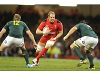 WALES v SA - FACE VALUE ***MIDDLE TIER, ROW 1 |CAT A | PAIR***