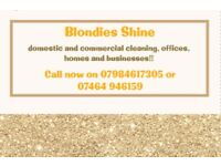 ***Cleaners*** ironing service***offices**houses**Blondies shine