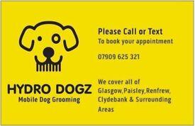 Eddies diy dogwash scotties dog grooming in leith edinburgh mobile dog groomer hydro dogz dog grooming glasgowclydebank surrounding solutioingenieria Images