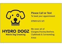 Mobile Dog Groomer (Hydro Dogz Dog Grooming) Glasgow,Clydebank & Surrounding