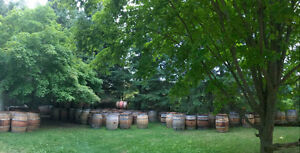 wine barrels Kitchener / Waterloo Kitchener Area image 9
