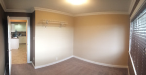 Modern 1 bed/1 bath down suite on Middleton avail. immediately