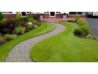 🌿SK GARDEN MAINTENANCE SPECIALISTS🌿maintenance from visits £15 . Gardening/ gardener /