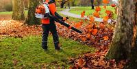 tonte gazon 35 $ /ramassage feuilles prix selon grandeur terrain