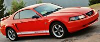 2004 40th anniversary edition mustang