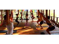 Join the Rocket Vinyasa Yoga Teacher Training in Nicaragua