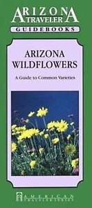 Arizona Wild Flowers: Guide to Common Species by Eleanor H. Ayer (Paperback,...