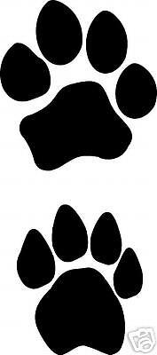 lion track / footprint sticker / paw print decal/ set of 4](Lion Paw Print)