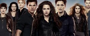 Twilight Saga Items Online- A Guide to buying and selling
