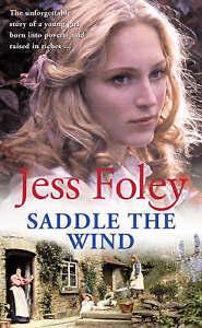Saddle The Wind By Jess Foleyin Used but Acceptable condition - Bedford, United Kingdom - Saddle The Wind By Jess Foleyin Used but Acceptable condition - Bedford, United Kingdom