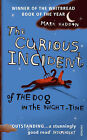 The Curious Incident of the Dog in the Night-time by Mark Haddon (Paperback, 2004)