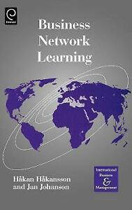 Business Network Learning (International Business and Management),