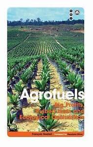 Agrofuels: Big Profits, Ruined Lives and Ecological Destruction (Transnational I