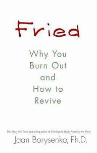 Fried: Why You Burn Out and How to Revive, Good Condition Book, PhD PhD, Joan Bo