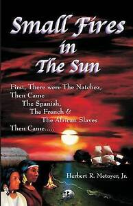 Small Fires in the Sun by Metoyer Jr, Herbert R. -Paperback