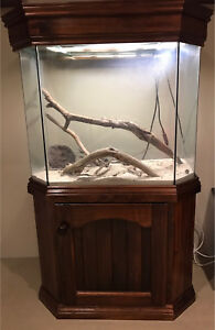 Glass Aquarium / Vivarium with wooden cabinet & hood Canning Vale Canning Area Preview