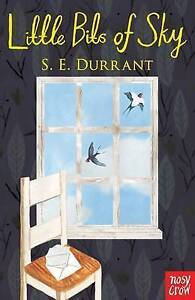 Little Bits of Sky by S. E. Durrant (Paperback, 2016)