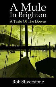 A Mule in Brighton by Rob Silverstone