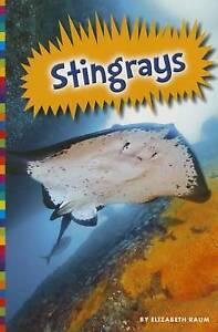 Stingrays by Elizabeth Raum (Paperback / softback, 2016)