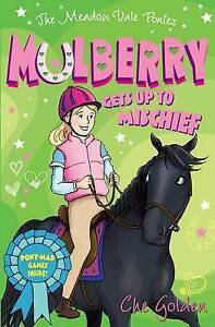 The Meadow Vale Ponies: Mulberry Gets up to Mischief, Golden, Che