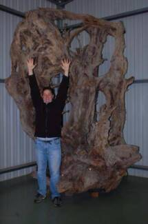 Timber (Burls,Slabs, Furniture) Clearing Sale- Koondrook, Vic