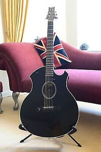Looking for Parker event series acoustic guitars. Any models