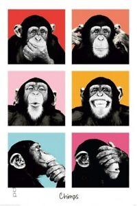 Poster The Chimp Affe Pop Art Warhol Stil Quadrate Farbit 61 x 91,5 cm