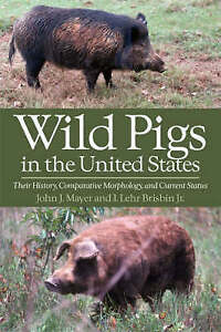 Wild Pigs in the United States: Their History, Comparative Morphology, and Curre
