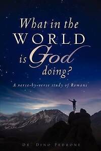 What in the World Is God Doing? by Pedrone, Dino -Paperback