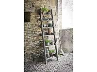 New Aldsworth Shelf Ladder - Spruce