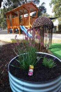 Gowrie Early Years Centres (Child Care)